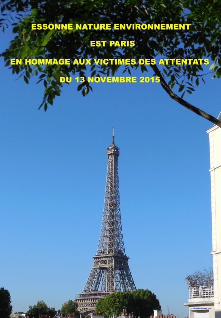 ENE EST PARIS